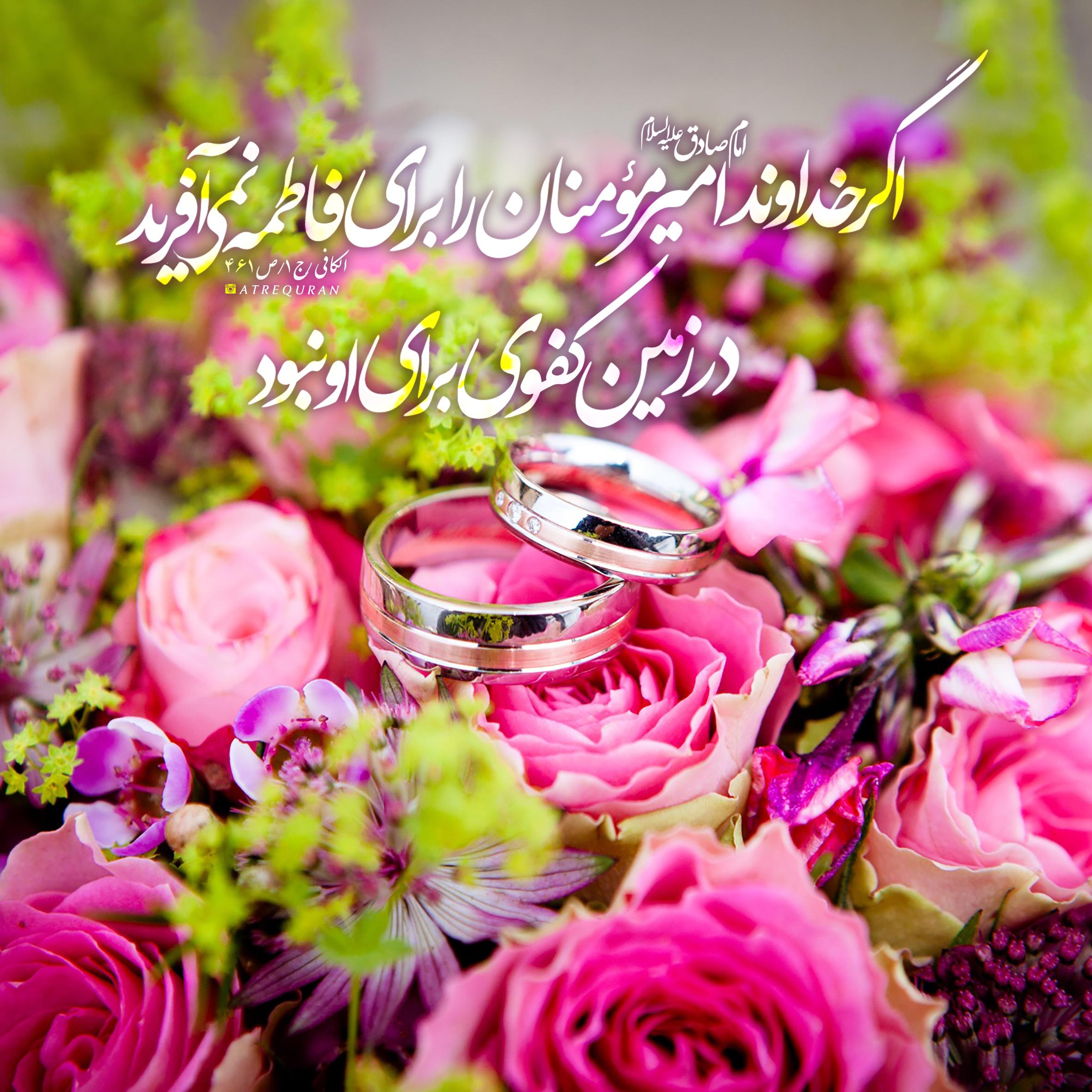 هم کفو فاطمه زهرا سلام الله علیها